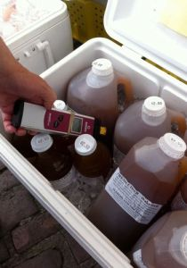 apple cider_farmers market photo