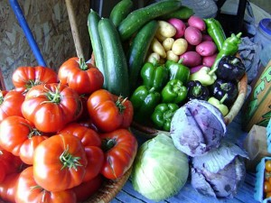 Green Mountain Girls' veggies! Source: eatstayfarm.com