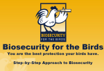 biosecurityforthebirds