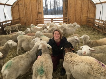 Mara Hearst, with her Levy Lamb ewes in Dorset, Vermont