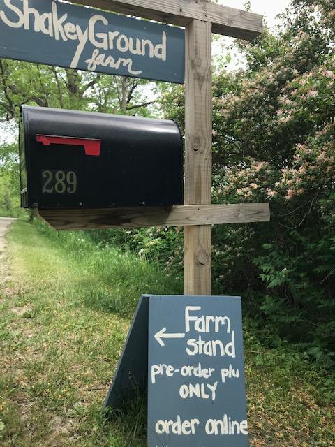 shakeyground mailbox